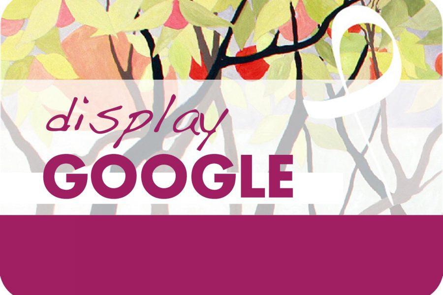 Campagna Google Display