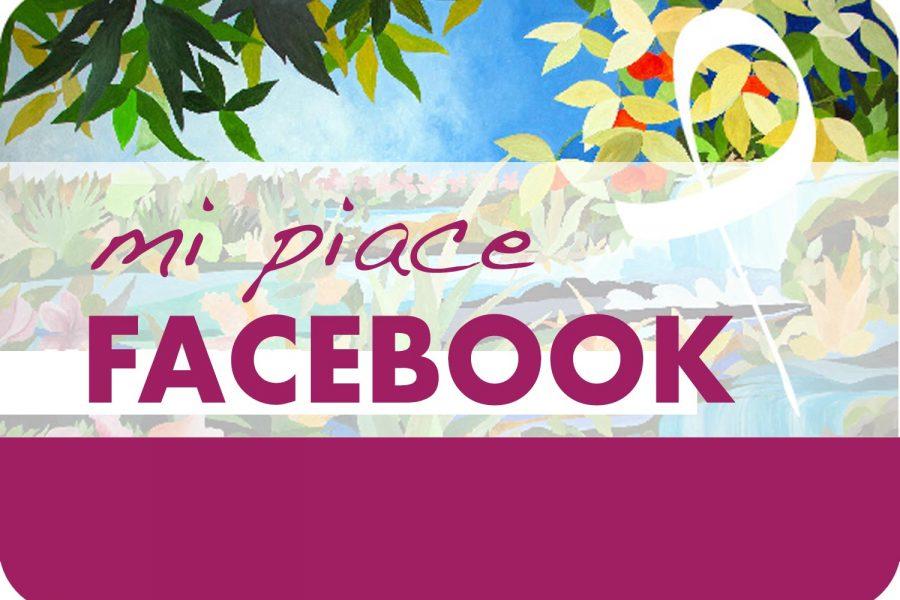 Campagna Facebook Mi Piace